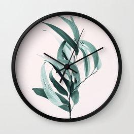 Eucalyptus II - Australian gum tree Wall Clock