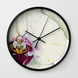 Cream & Fuchsia Phalaenopsis Orchids Wall Clock