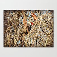 woody Canvas Prints featuring Woody by DeLayne