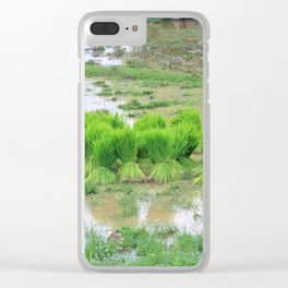 Les pousses, Don Det, Laos Clear iPhone Case