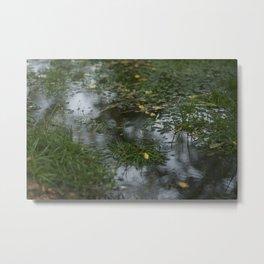 Water.  Metal Print