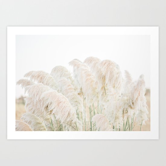 Natural Pampas Grass by roostfineart
