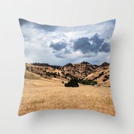 Sutter Buttes view 2019 Throw Pillow