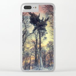 winter evening Clear iPhone Case