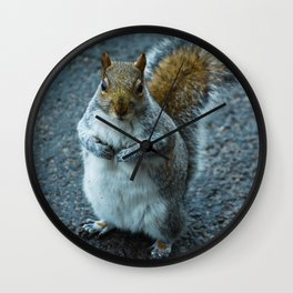 Feeling Nutty Wall Clock