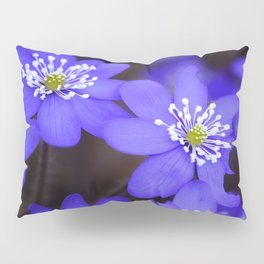 First Spring Flowers in Forest Pillow Sham