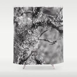 Líquen Shower Curtain