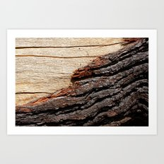 Wood Duo Art Print