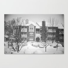 Flakes Falling Canvas Print