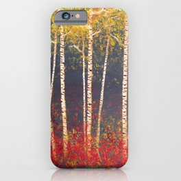 Birch Trees in the Fall iPhone Case
