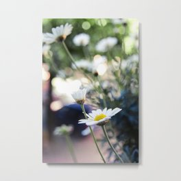 Balconi fioriti_00 Metal Print