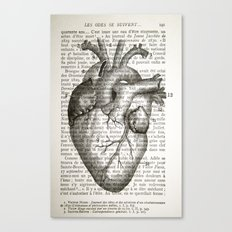 Anatomical Heart on French Canvas Print