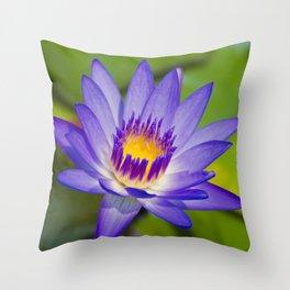 Pūpūkea Garden Breeze Throw Pillow