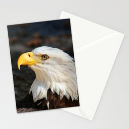 In The Eye Of A Raptor Stationery Cards