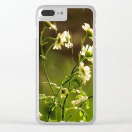 Babies breath at the onset of rain Clear iPhone Case