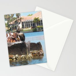 Birds in Florida Stationery Cards