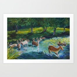 Walking through a Sapphire River Art Print