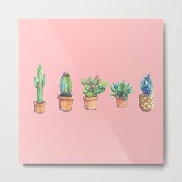 evolution cactus to pineapple pink version Metal Print