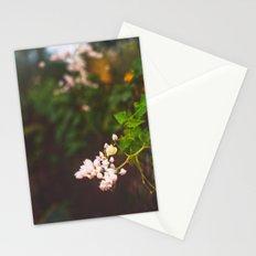 Desert Botanical Gardens Vintage Stationery Cards