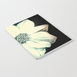White Dahlia, Christmas Star Notebook