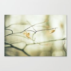 Land Awakening Canvas Print