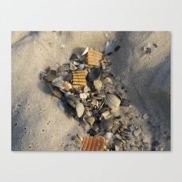 Unwanted Canvas Print