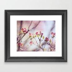 Pink Dogwood Flower Photography, Pastel Lavender Floral, Spring Nature Art Framed Art Print