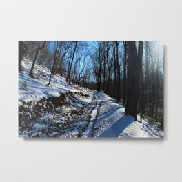 Road covered with white snow Metal Print