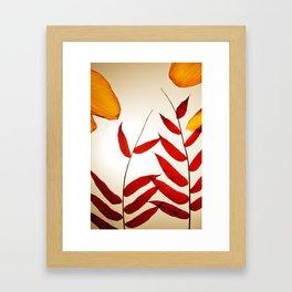 Into the Leaves  Framed Art Print