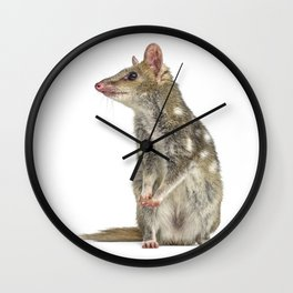 Tiger quoll Wall Clock