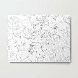 Asiatic Lillies I line art Metal Print