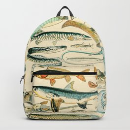 Vintage Fish Diagram // Poissons II by Adolphe Millot XL 19th Century Science Textbook Artwork Backpack