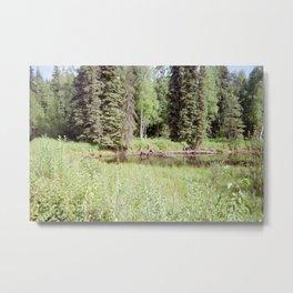 Moose in River in Alaska Metal Print
