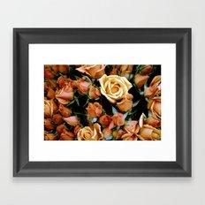 Rosebuds, Darling Rosebuds Framed Art Print