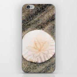 Sand Dollar iPhone Skin