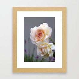 Briar Roses Framed Art Print