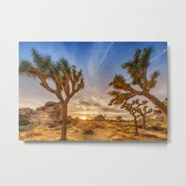 Gorgeous Sunset at Joshua Tree National Park Metal Print