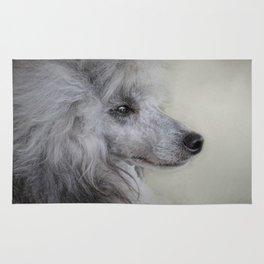 Longing - Silver Standard Poodle Rug