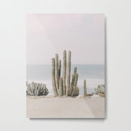 Blooming Metal Print