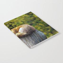 Cozy Spot Notebook