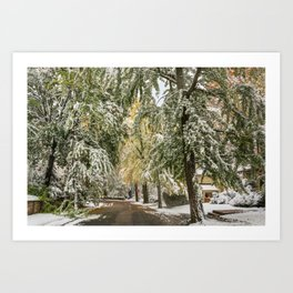 October snow Art Print