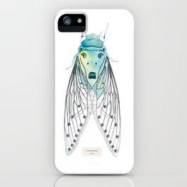 Cicadae Musicadae iPhone Case