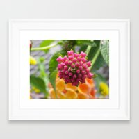 square Framed Art Prints featuring square by Dottie