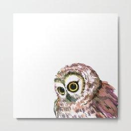 Cute Little Owl Metal Print