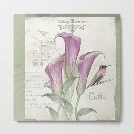 Vintage Calla Lily Postcard Metal Print