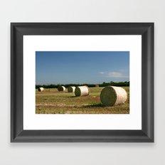 Hay rolls Framed Art Print