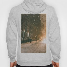 Winter - New York City - Snows Falls - Washington Square Hoody