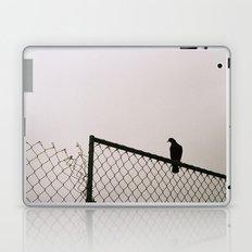 Pigeon Fence Laptop & iPad Skin
