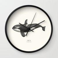 orca Wall Clocks featuring Orca by Sam Lyne