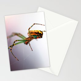 Colorful Spider Stationery Cards
